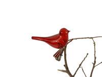 Vogel rot  mit Klipp
