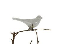 Vogel klar  mit Klipp